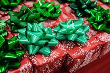 moore_family_christmas_20121211_1004